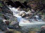 Living Water by Larry Dyke