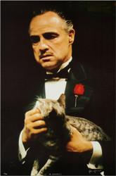 The Godfather's Cat Godfather's Cat  by Steve Schapiro