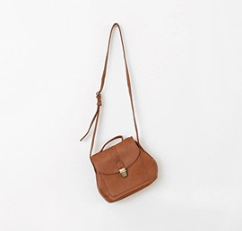 Brown Chic Bag