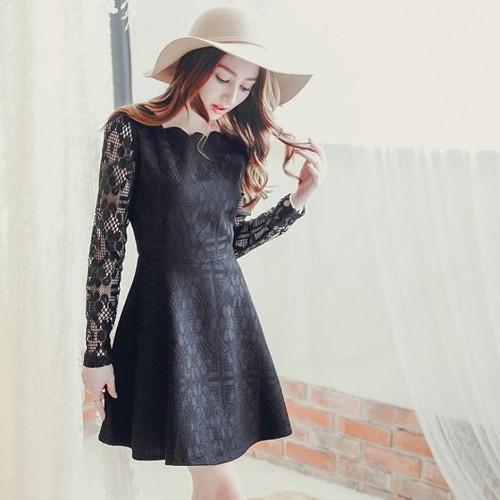 Elegant Lace Sleeve Dress