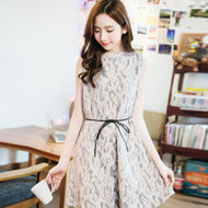 Lady Lace Sleeves Dress