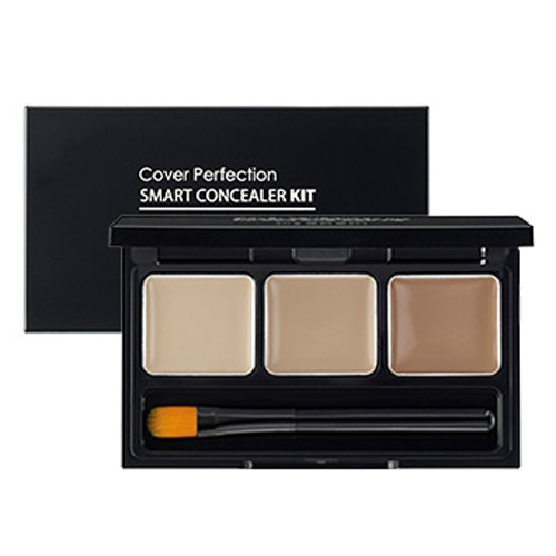 the SAEM Cover Perfection Smart Concealer Kit