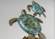 john-townsend-turtle.jpg