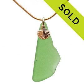 Long Green Sea Glass With 14K Goldfilled Shell Charm - 14K G/F CHAIN INCLUDED