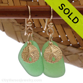 Perfect beach found green sea glass pieces are set with 14K Goldfilled sandollar charms on professional grade earring wires. Sorry these Sea Glass Earrings have been SOLD!