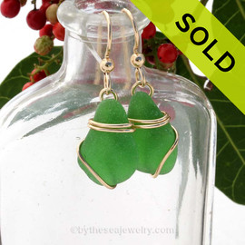 A lovely pair of vivid green sea glass in beautiful simple gold simple and secure earring setting. SOLD - Sorry these Sea Glass Earrings are NO LONGER AVAILABLE!