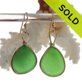 Extra Large Green Genuine Sea Glass Earrings In 14K Goldfilled Original Bezel Wire©