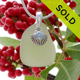 "Seaweed or Peridot Green Sea Glass With Sterling Silver Shell Charm - 18"" STERLING CHAIN INCLUDED"