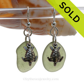Seaweed Green Genuine UNALTERED Sea Glass Earrings W/ Solid Sterling Sea Turtle Charms