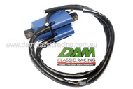Dual CDI Ignition Coil