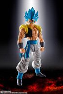 S.H.Figuarts Super Saiyan God Super Saiyan Gogeta (Dragonball Super Broly) Action Figure