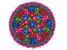 """Black Floral Multicolor Embroidery Round Pillow Cover - Indian Floor Cushion 24"""""""