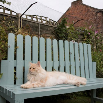 ProtectaPet® Cat Fence Barrier in use.