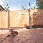 ProtectaPet® Cat Fence Extra Long Barrier in use.