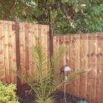ProtectaPet® Cat Fence Left Corner Extra Long Bracket in use.