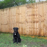 ProtectaPet® Dog Fence Right Corner Bracket in use.