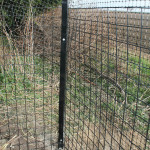 """Not only is the system great for keeping the cats safe but Simon and his team are great to deal with too and they understand cats which really helps. Its not just a business to them they really want to keep cats safe whilst still giving them some freedom. Now saving up for the next area to be fenced!"" - John Tipper"
