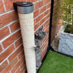Catipilla Wall Mounted Cat Scratching Post