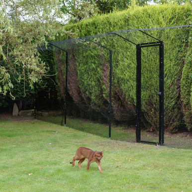 ProtectaPet® Cat Enclosure Turf in use. Gate sold separately.