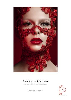 cezanne-canvas-small.jpg