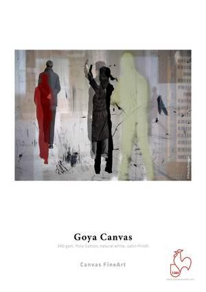goya-canvas.jpg