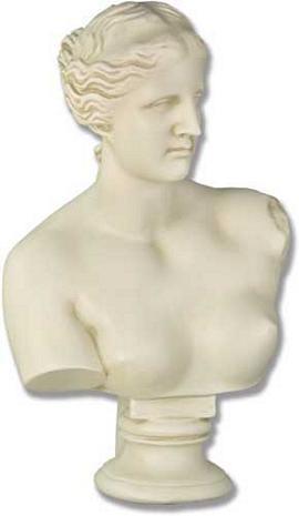 Venus Bust - Photo Museum Store Company