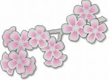 Cherry Blossom Pin - Photo Museum Store Company