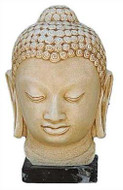 Head of Buddha - Photo Museum Store Company