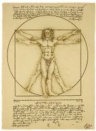 Vitruvian Man Wall Plaque - Leonardo da Vinci circa 1487 - EXCLUSIVE - Photo Museum Store Company