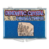 Mineral Collection -Dendritic Crystal - Actual Authentic Specimens - Photo Museum Store Company