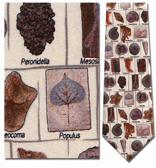 Fossils in Squares with Names Necktie - Museum Store Company Photo