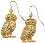 Owl earrings - Museum Shop Collection - Museum Company Photo