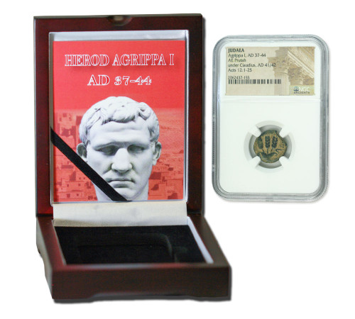 Genuine Agrippa 1st Judaea Bronze Prutah NGC Certified Slab Box (High grade) : Authentic Artifact - Museum Company Photo