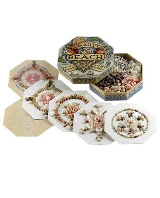 Beauty from the Beach  - Sea Shell Pictures, Spice Islands 1850's. - Photo Museum Store Company