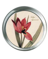 Tulip, Botanical Paperweight - Photo Museum Store Company