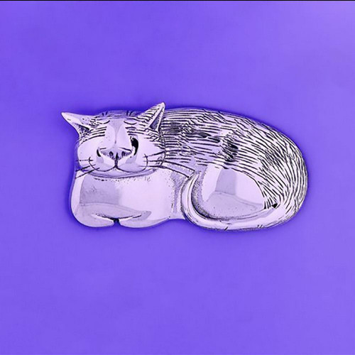 Cozy Cat Sterling Silver Pin - Inspirational Jewelry Photo
