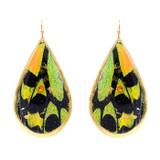 Green Orange Butterfly Teardrop Earrings - Museum Jewelry - Museum Company Photo
