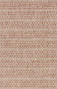 Isle Collection Beige/Rust Rug