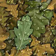ArtScape 8' Oak Leaves Pool Table Cloth