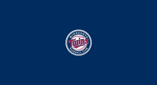 Minnesota Twins Pool Table Felt – 9 foot table