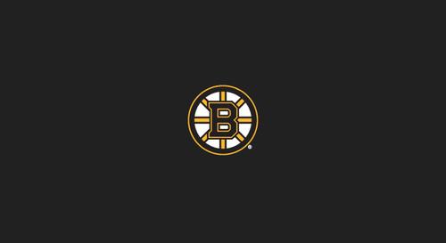 Boston Bruins Pool Table Felt – 9 foot table
