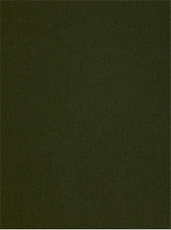 Jefferson Linen 245 Peat Moss Linen Fabric