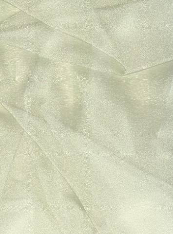 Ivory Sparkle Organza Fabric