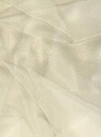 Champagne Sparkle Organza Fabric