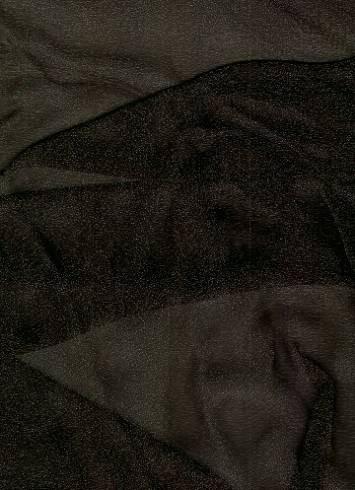 Black Sparkle Organza Fabric