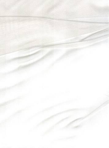 White Silk Organza Fabric