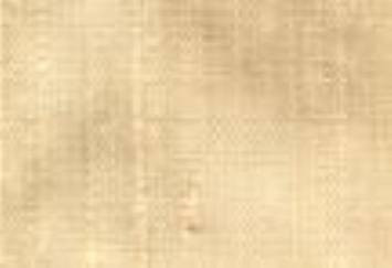 Sand Silk Dupioni Fabric