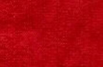 Red Silk Dupioni Fabric