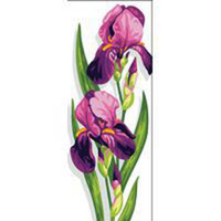 Irises Tapestry Canvas By Royal Paris