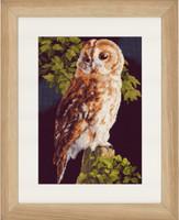 Owl Cross Stitch Kit by Lanarte